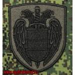 Полевой нарукавный знак сотрудников Федеральной службы охраны Российской Федерации