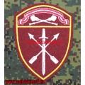 Шеврон частей оперативного назначения Центрального округа ВНГ