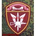 Шеврон подразделений специального назначения Росгвардии Центральный округ